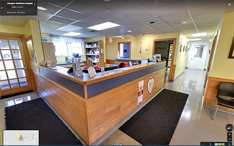 animal-hospital-virtual-tour NH Retail Virtual Tours - Make it Active, LLC